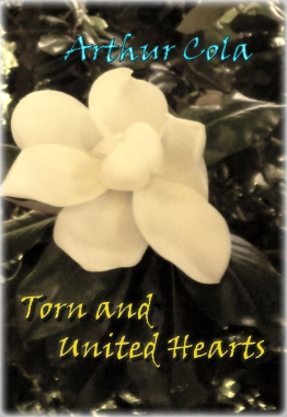 Torn and United Hearts Cover 2016